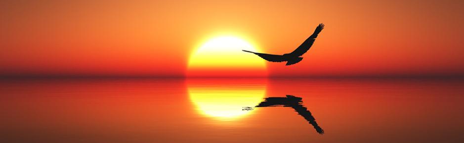 erfolgreich entspannen und sich wohlfühlen. Mit meinen Infrarot Strahlungswärme Natursteinliegen habe ich mir einen Traum erfüllt